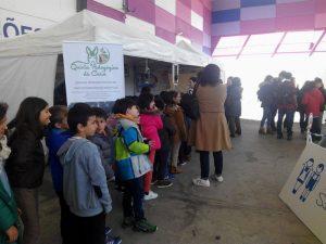 Greenfest celebrou o 10º aniversário em Torres Vedras