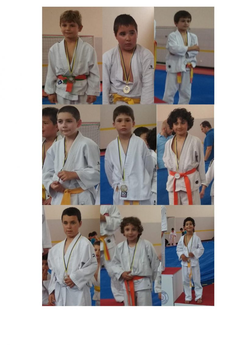 judo da fisica na lourinhã