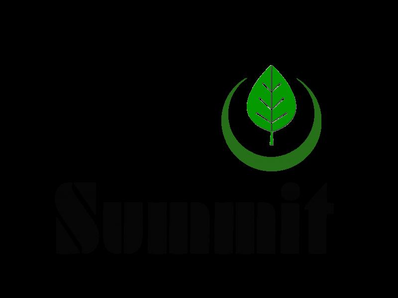 Logo Final Eco Summit