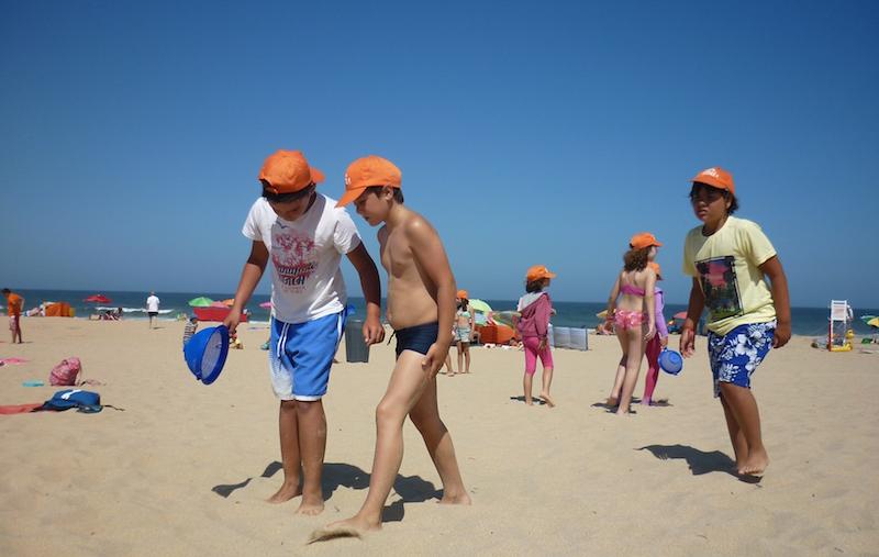 Praias do concelho de Torres Vedras acolheram mais uma vez atividades de educação ambiental do Programa Bandeira Azul