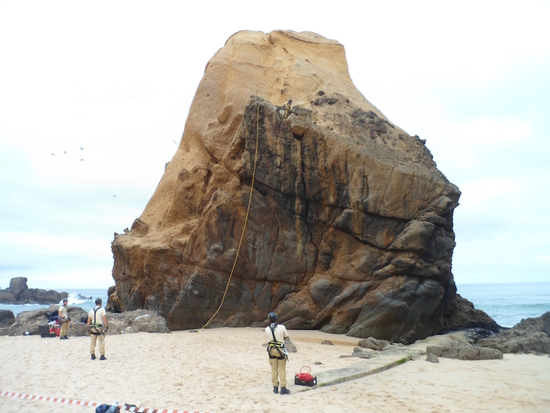 Ações de saneamento foram levadas a cabo na costa do concelho