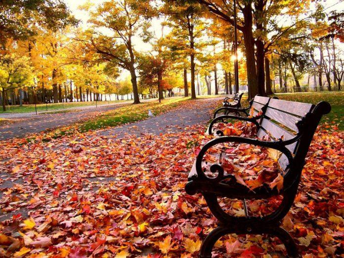 Chegou hoje o Outono, mas