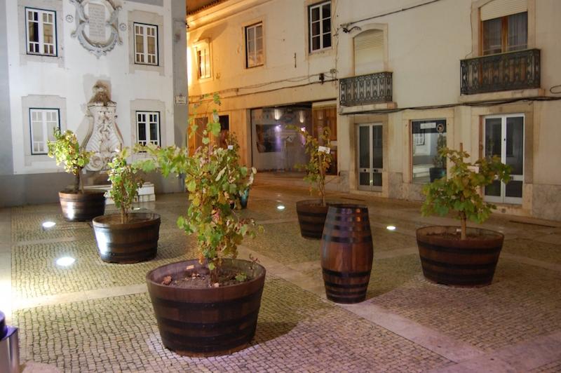 Projetos expositivos enriquecem de novo as Festas da Cidade de Torres Vedras