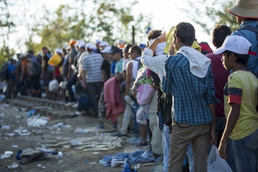 Torres Vedras recebe refugiados do primeiro grupo que chega a Portugal na quinta-feira