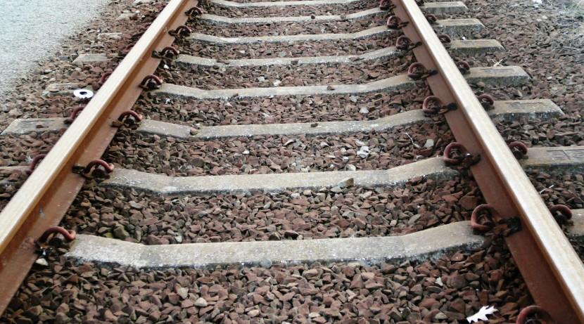 Autarcas defendem eletrificação total e alteração do traçado da Linha do Oeste