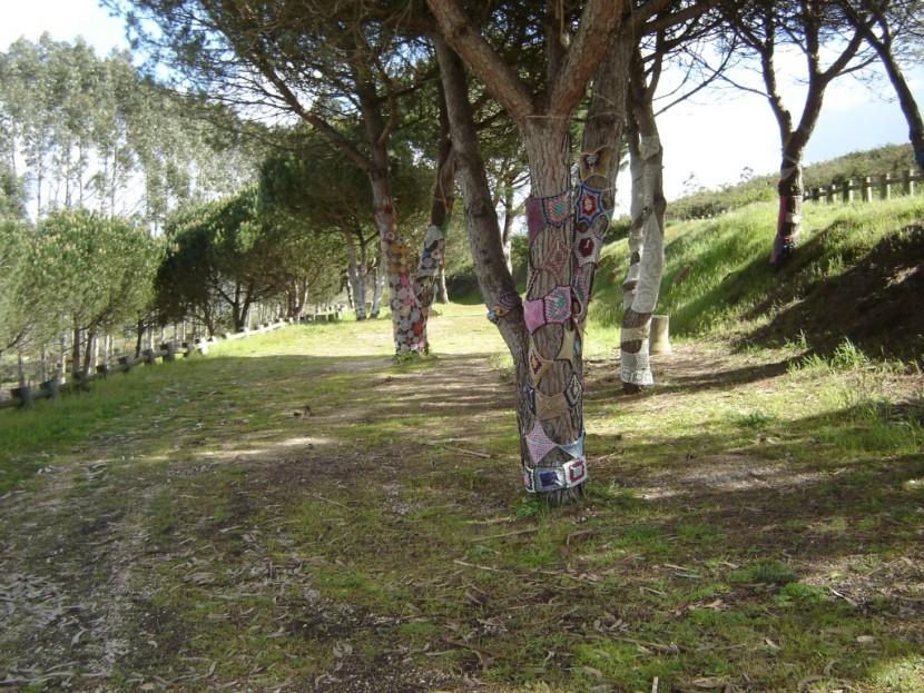 Roubo de Mobiliário Urbano no Parque de Merendas da Serra do Socorro