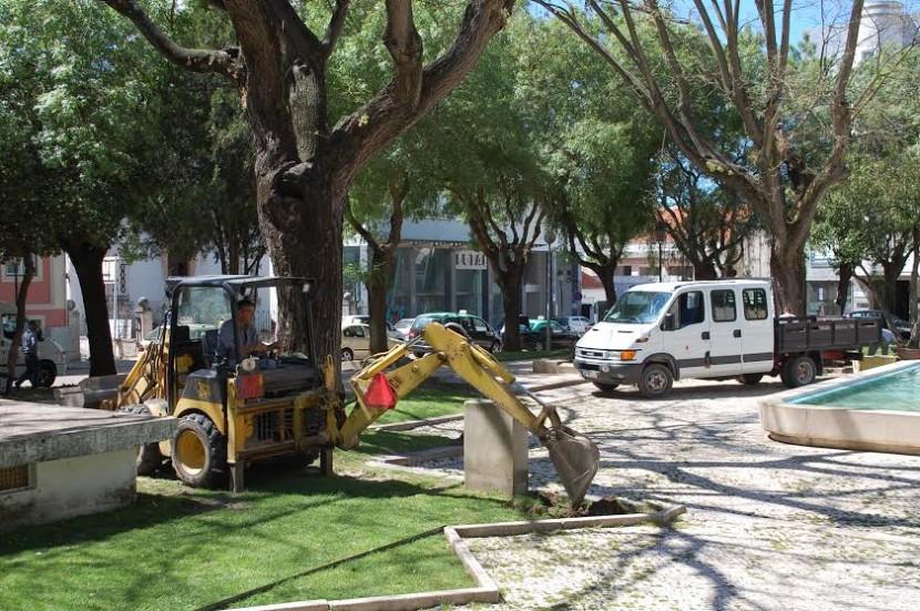 Jardim da Graça está a ser alvo de uma intervenção de manutenção