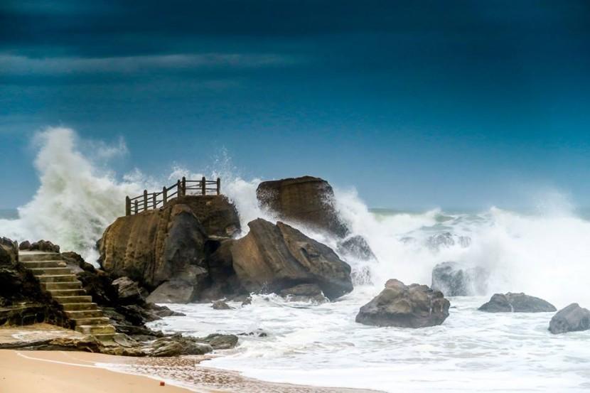 Quercus distingue 382 praias com qualidade excelente, 12 delas pertencem a Torres Vedras