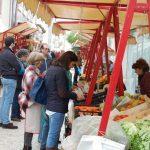 feira rural 1