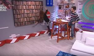 Rita Camarneiro cai