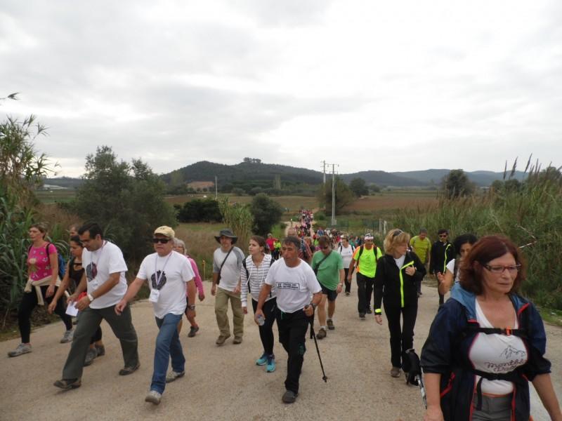 Rota do Morango: mais de 200 pessoas na inauguração do passeio pedestre do Ramalhal