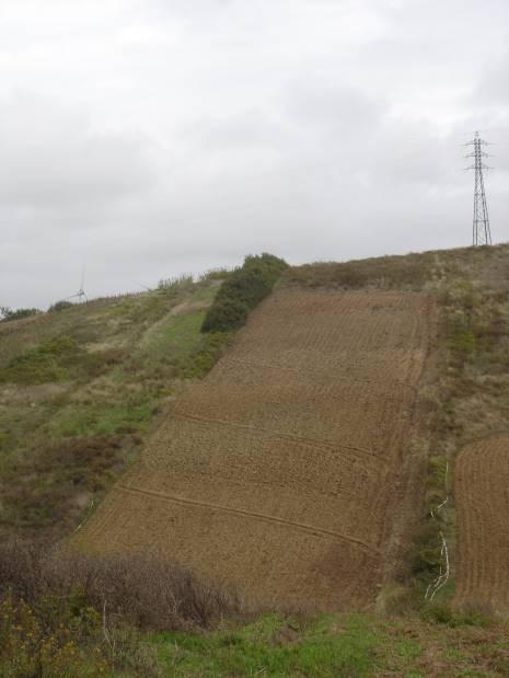 Proteção Civil de Torres Vedras faz recomendações para o novo Ano Hidrológico