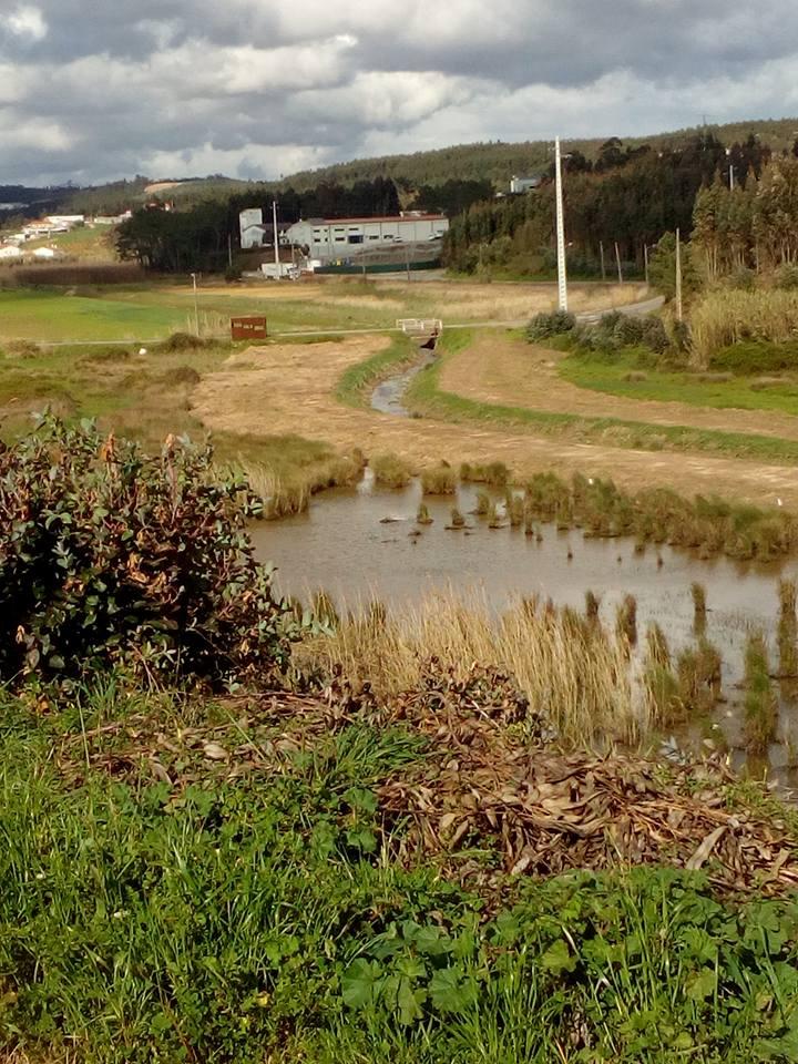A preservação do Ambiente volta a estar em causa no Paúl