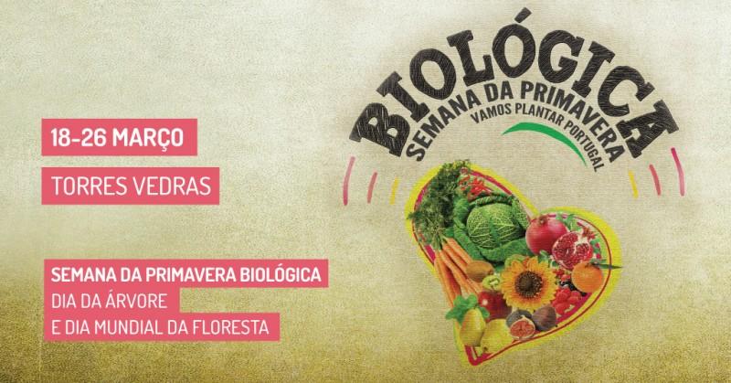18 a 26 de Março: Semana da Primavera Biológica, Dia da Árvore e Dia Mundial da Floresta