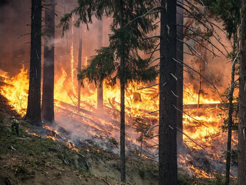 Período crítico de incêndios prorrogado até 15 de Outubro