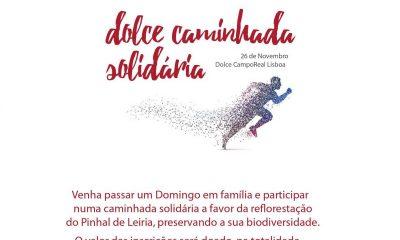 Domingo há caminhada solidária para reflorestar o Pinhal de Leiria