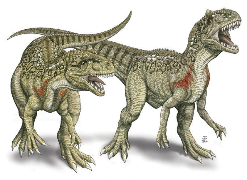 Dinossauro com 23m chega ao Dino Parque