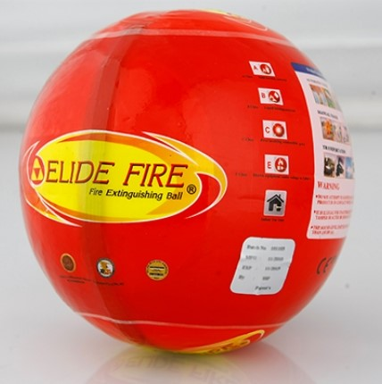 elifefireball1