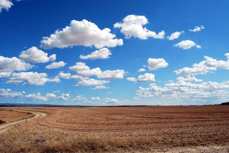Medidas prevenção para os efeitos da seca