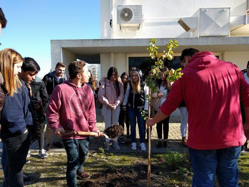 ESCO - Plantar uma árvore pelo futuro