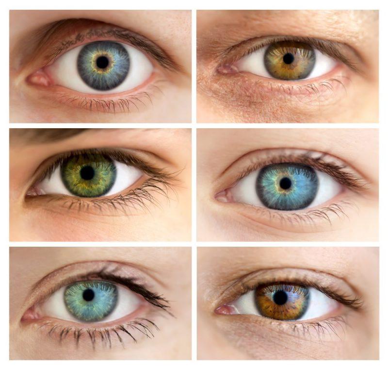 Curiosidades sobre os olhos