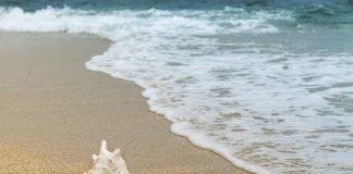 Praia da Física em Santa Cruz com wi-fi gratuito