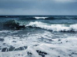 """Conferência """"Saber para Mudar"""" no âmbito da comemoração do Dia Mundial dos Oceanos"""