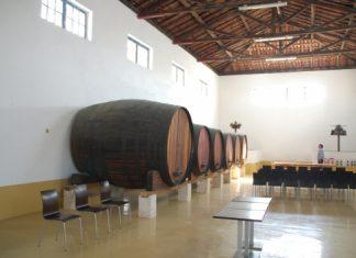 Da Vinha ao Vinho - Concerto Temporada Darcos