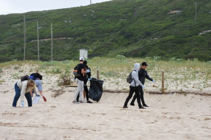 Alunos torrienses recolheram 300 kg de resíduos das praias