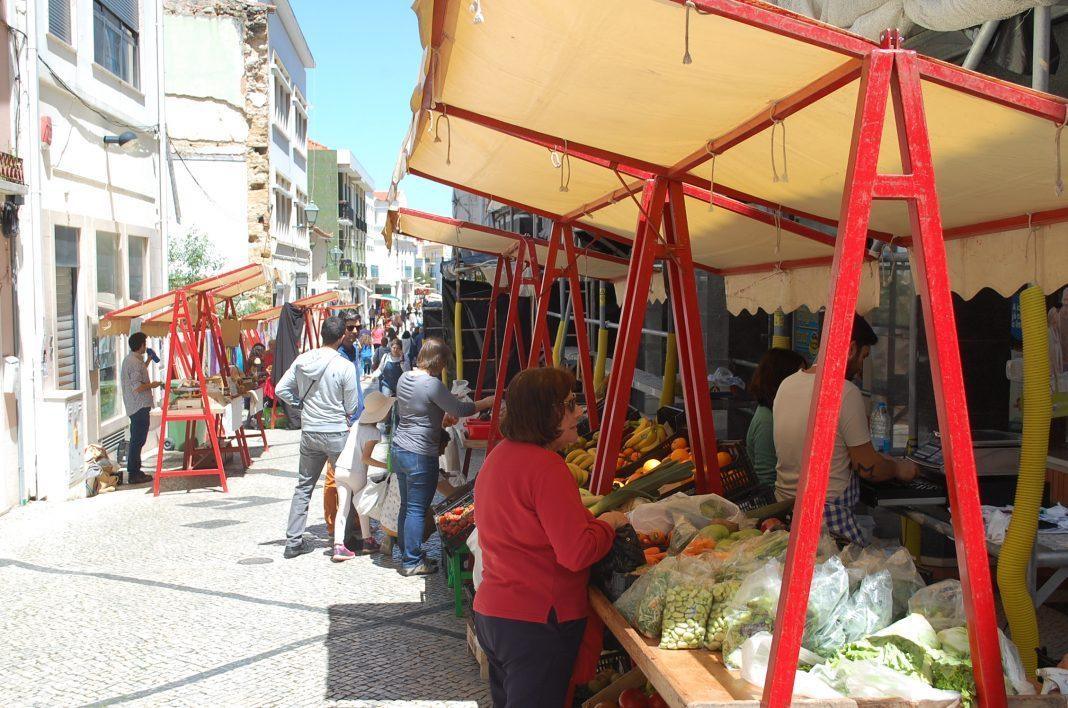 """Campo """"visita"""" de novo a cidade em Torres Vedras"""