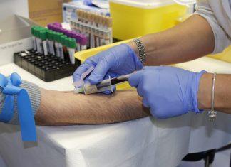 Campanha de recolha de sangue já angariou 511 litros