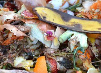 RECICLAGEM: Formação em compostagem