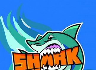 Shark Race é este sábado