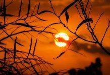 Temperaturas acima dos 35º no primeiro dia de Outono em quase todo o pa