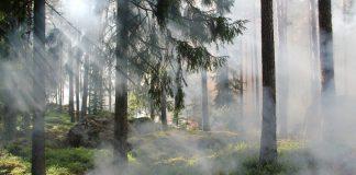Prolongamentodo período crítico de incêndios até 15 de outubro