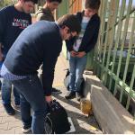 JSD pesa mochilas dos alunosnos concelhos de Arruda dos Vinhos, Lourinhã e Torres Vedras