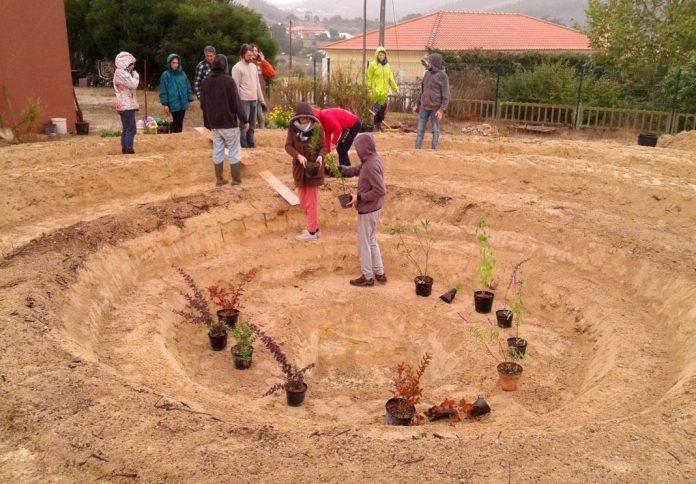 EcoCampus da Cadriceira acolhe projeto de Permacultura
