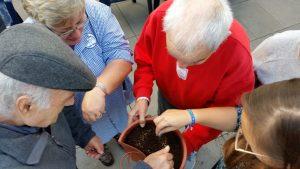 Crianças e idosos deram vida a uma horta no Centro Social Paroquial de Torres Vedras