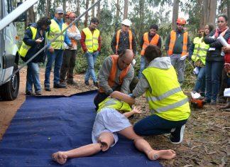 Ramalhal acolheu simulacro de acidente de trabalho em operações florestais