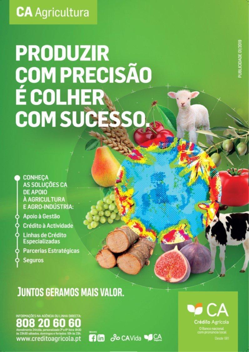 Crédito Agrícola apoia modernização da produção e internacionalização do sector agrícola