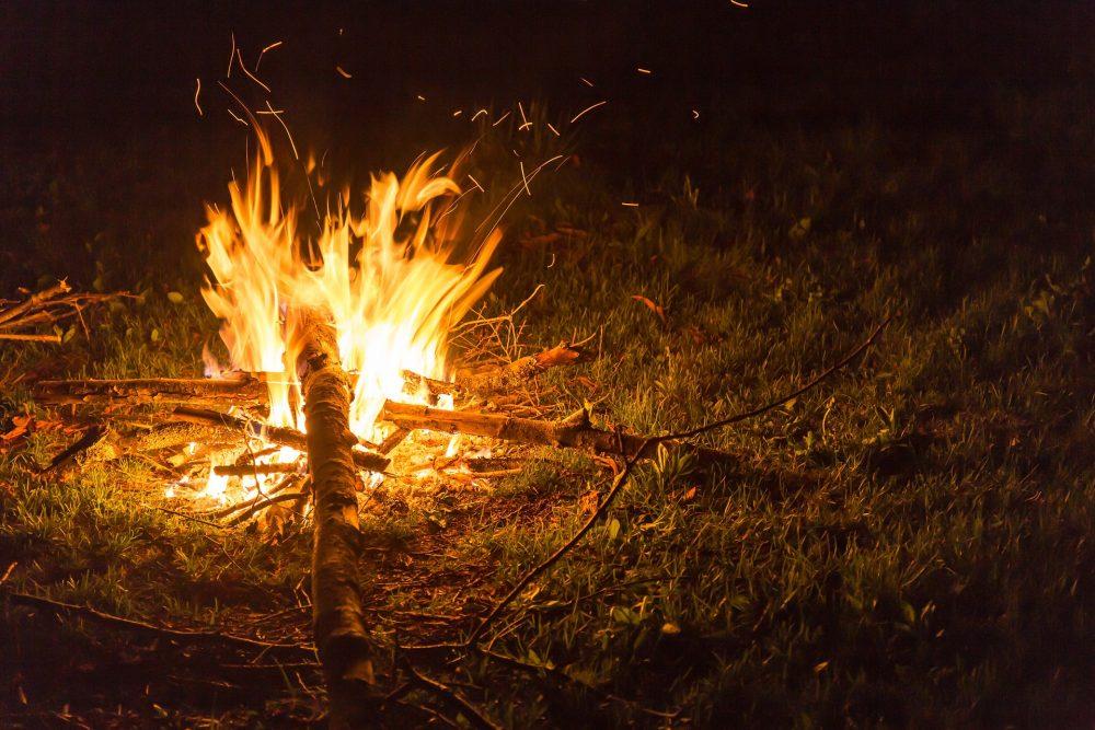 Já arrancou a Operação Floresta Segura 2019 da GNR
