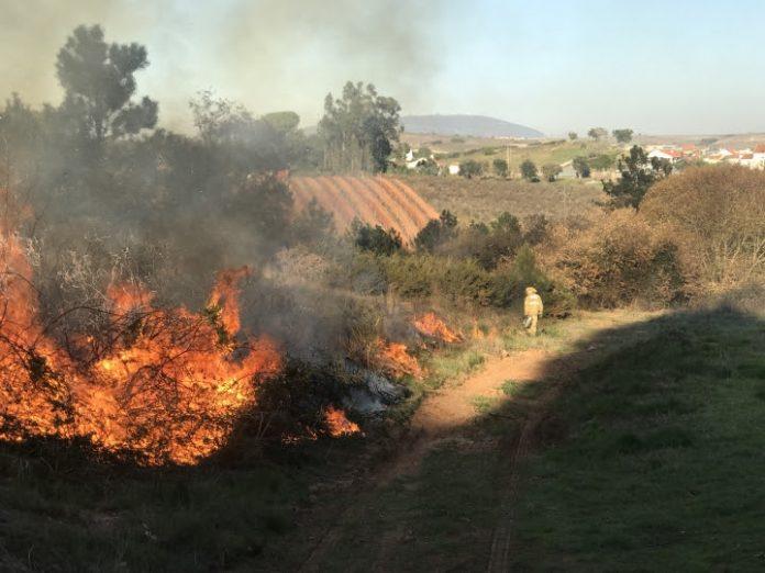 Decorreram ações de fogo controlado no concelho de Torres Vedras