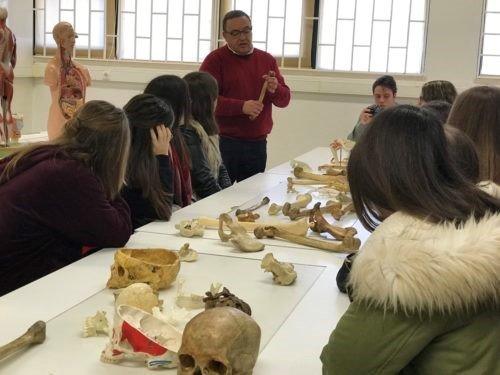 Curso Técnico Auxiliar de Saúde participa no Workshop de Anatomia e Histologia no Instituto Superior de Saúde Egas Moniz