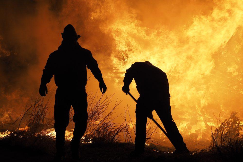 Risco de incêndio rural e florestal elevado hoje no concelho de Torres Vedras