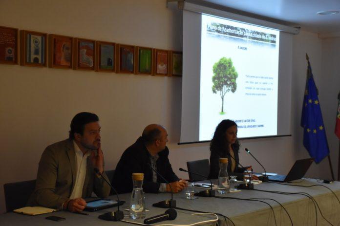 Mais 185 exemplares arbóreos vão ser plantados na Cidade