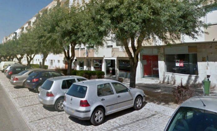 Árvores da Rua António Leal d'Ascensão serão transplantadas para a margem do Rio Sizandro