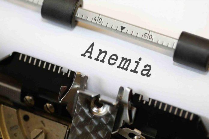 Dia Mundial da Saúde - Um em cada cinco portugueses adultos tem anemia