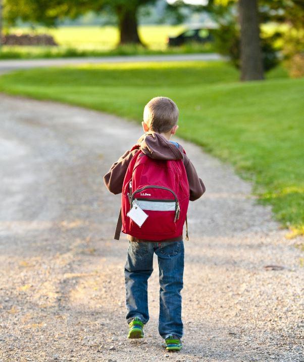 7 Escolas do concelho candidataram-se a ser uma Escola Amiga da Criança