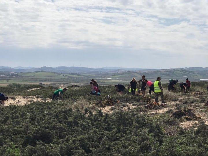 Voluntários promoveram conservação de natureza em Torres Vedras