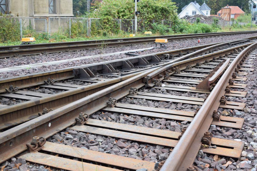 Comissão da Linha do Oeste saúda descontos nas ligações ferroviárias a Lisboa